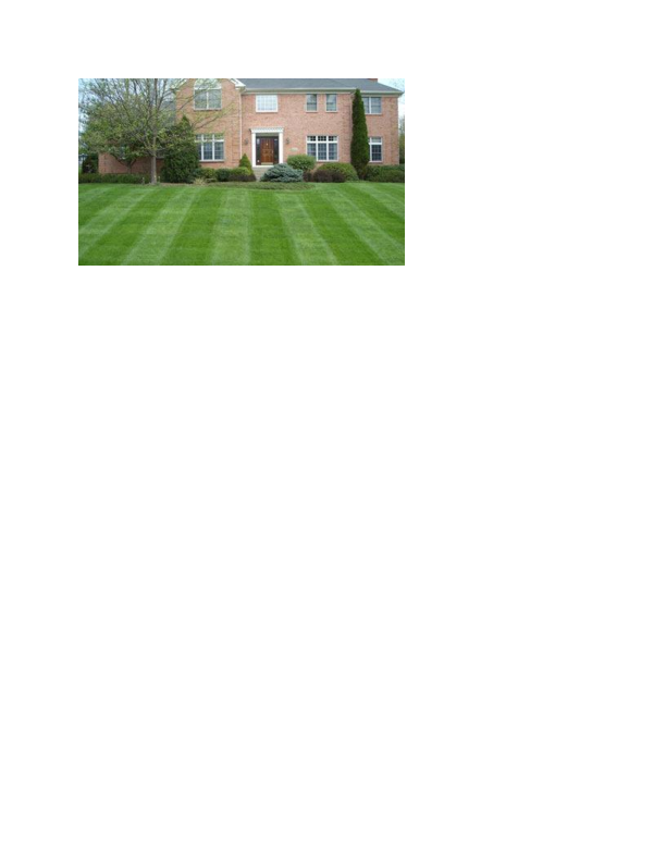 Lawn Care provided by Precision Outdoor Services in Sussex County NJ
