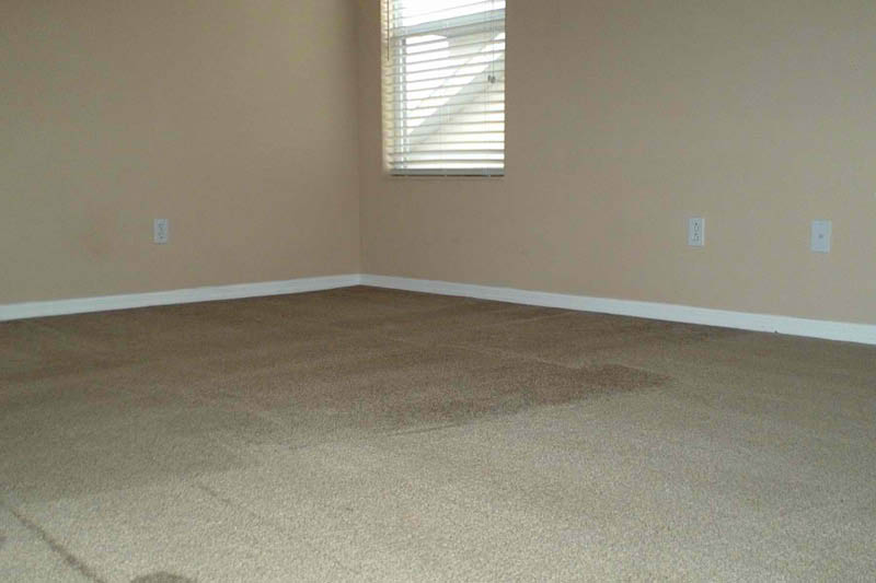 carpet cleaning near Kissimmee