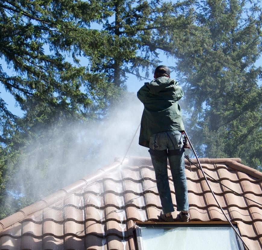 Pro-Long Roof & Gutters - roof cleaning - moss removal - roof cleaning coupons near me - Snohomish roof cleaning - roof cleaning in Snohomish, WA