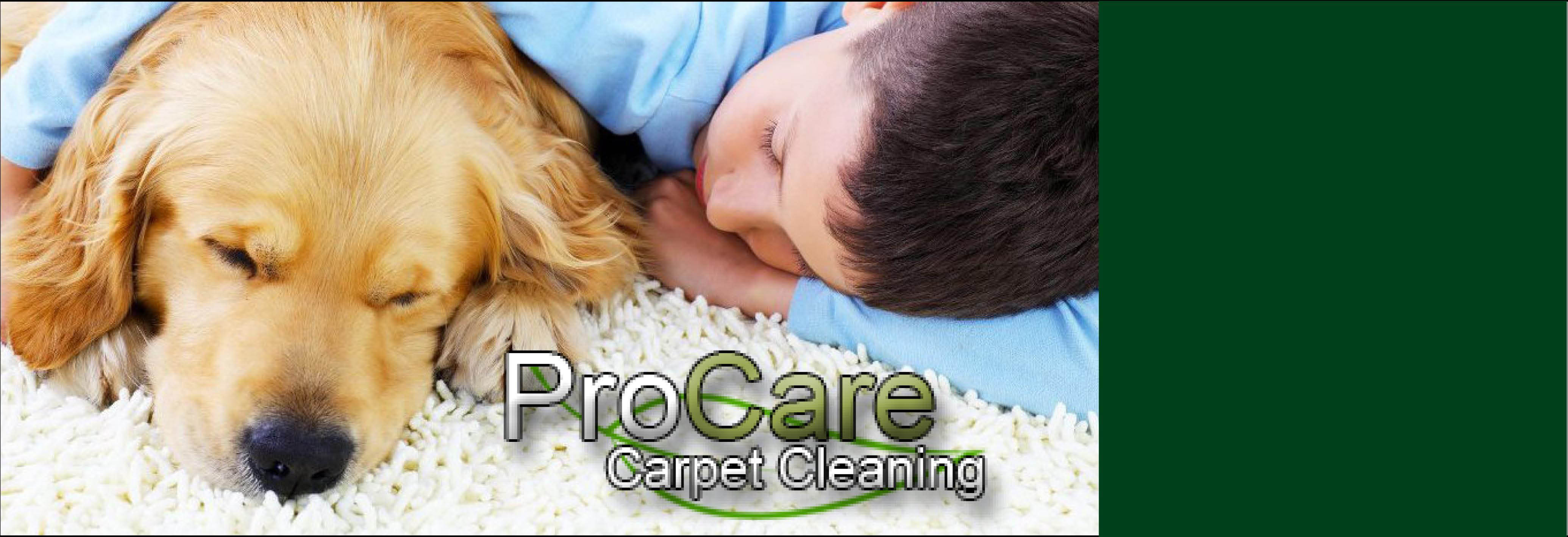 Procare Carpet Cleaning Serving Davis,Morgan and Weber Counties.