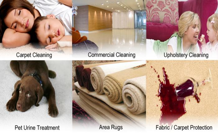 Quality Cleaning and Restoration does all types of stain and odor removal