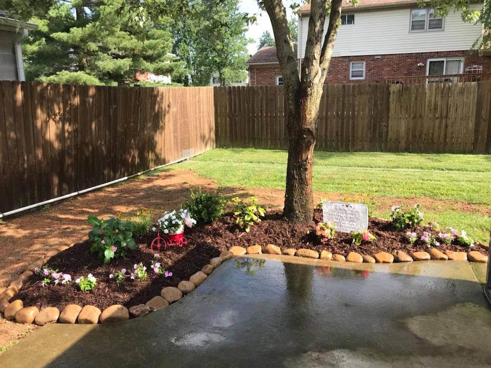 weed control, fertilization, power seeding, foundation treatments, landscape, garden