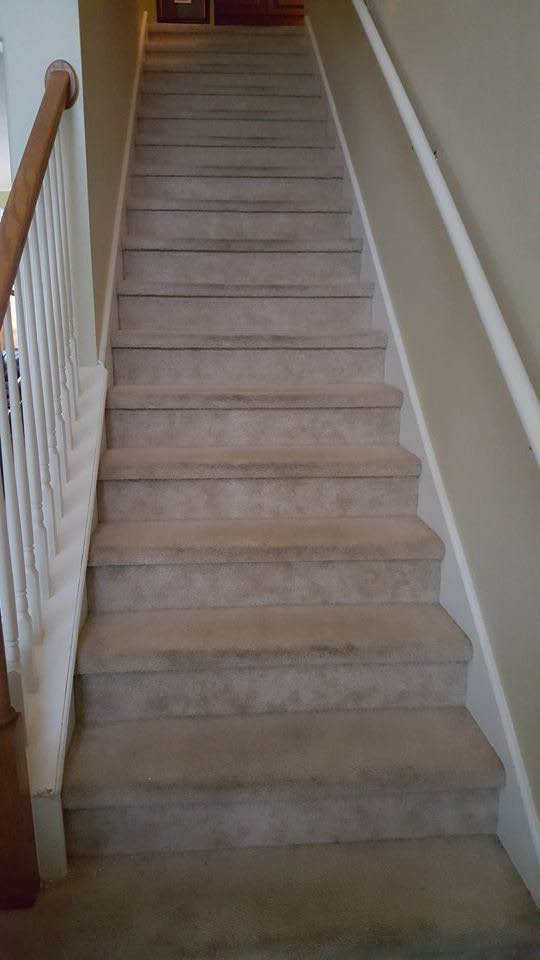 SA Flooring Perfections Carpet Stairs