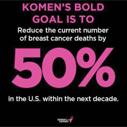 Susan G. Komen Race For the Cure Maryland goal
