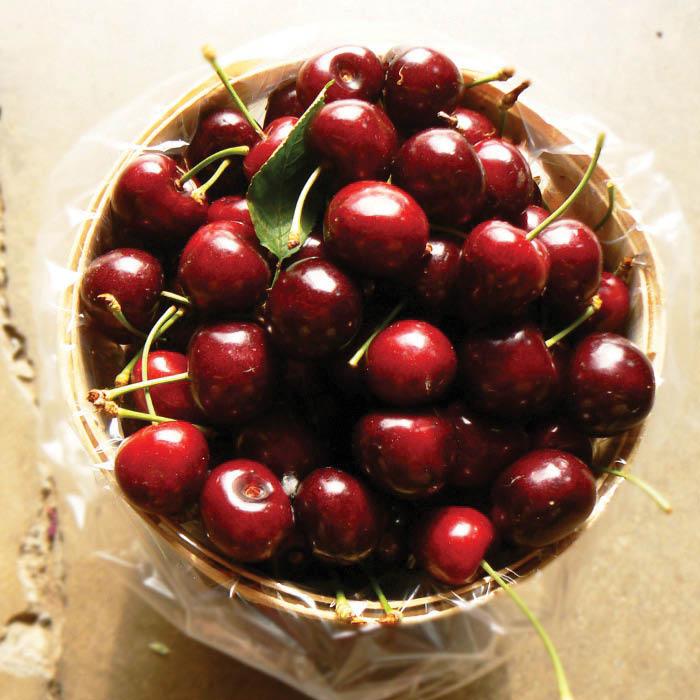 Farm good, Plants, Fruit, Produce, Apples, Pears, Watermelon