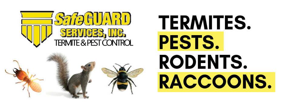 bed bug bites,bed bug removal,flea removal,flea control,bug exterminator,insect pest control