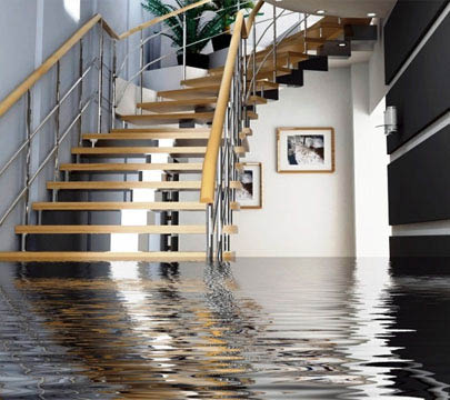 Water Damage Remediation and Restoration.