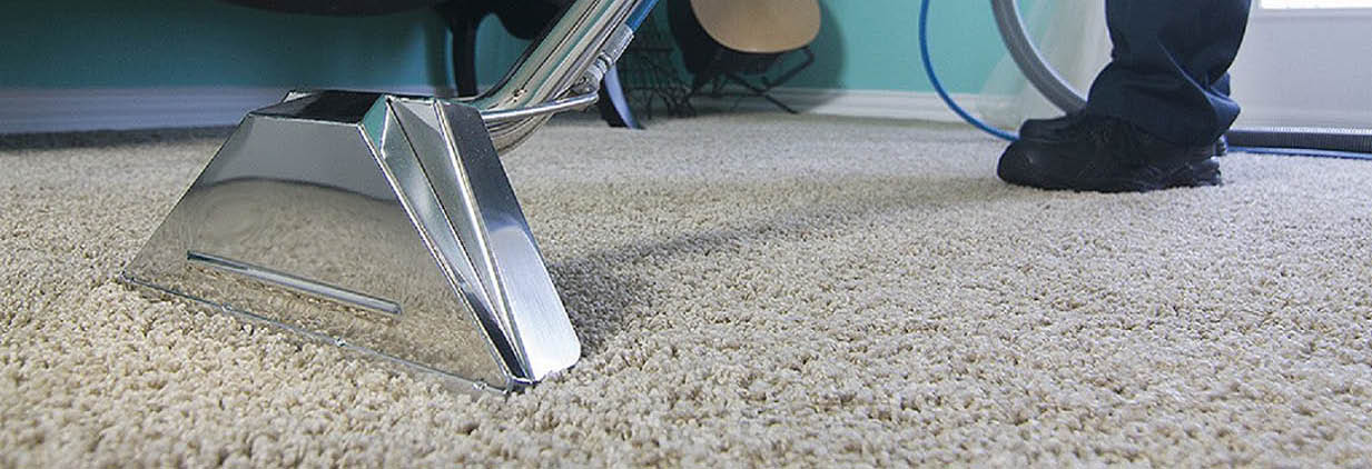 Sanchex Carpet Cleaning main banner image - Lynnwood, WA