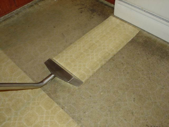 dirt & stain removal my carpet cleaner charlotte NC