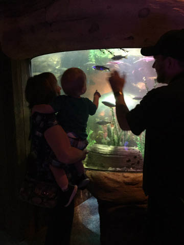 photo of family at Sea Life Michigan Aquarium in Great Lakes Crossing Outlets in Auburn Hills, MI