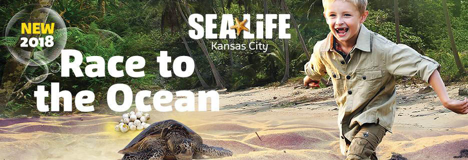 Sea Life Kansas City Race to the Ocean