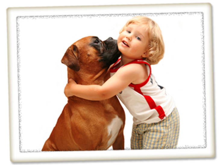 Seattle, WA - Mercer Street Veterinary Hospital - little boy and his dog - Seattle veterinarians