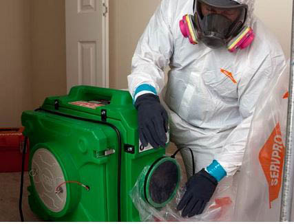 Mold damage clean-up at SERVPRO