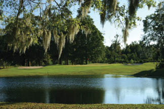 Golf courses in the Lowcountry