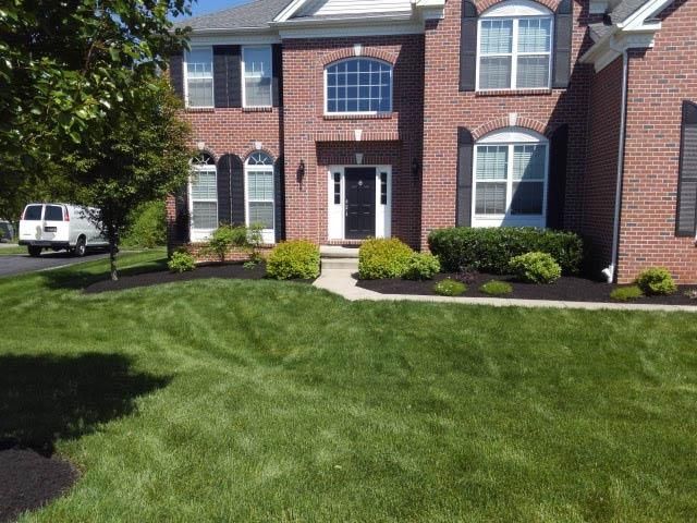silverback lawn & landscaping,lawn,landscaping in delaware,landscapers near me,discount,deal