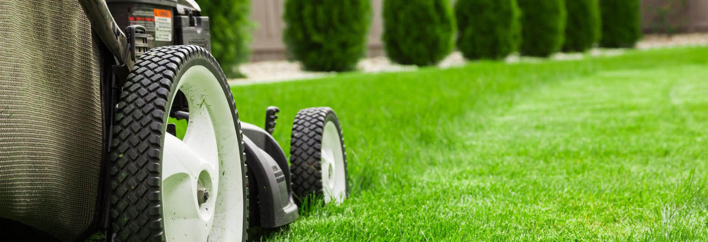 save on tune-ups save on lawn repairs fix my weedeater