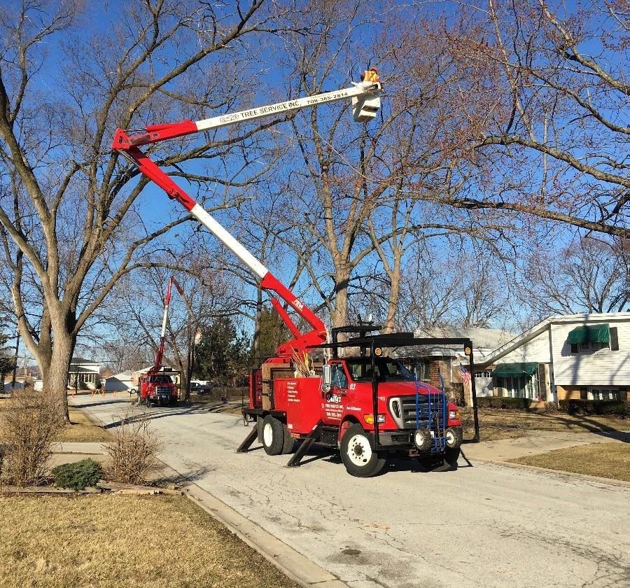 Smitty's boom crew trimming trees.