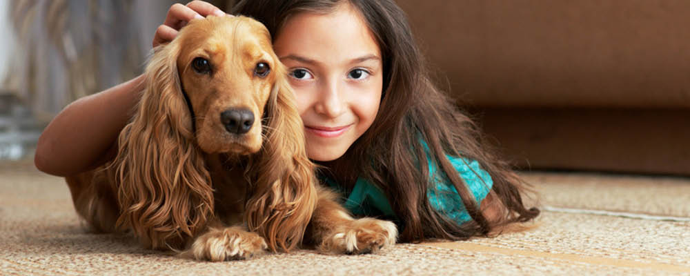 Carpet cleaning that's safe for children and pets - professional carpet cleaning near me - truck mounted carpet cleaning - Snohomish Carpet Cleaning in Snohomish, Washington