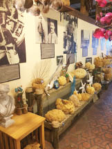 Historic Tarpon Springs FL Organic natural sponges local products