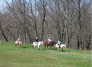 Trail riding from Spring Valley Equestrian Center in Newton NJ