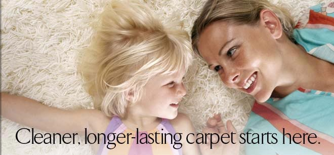 Recently cleaned carpet removed allergens in S Florida