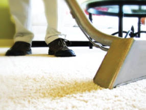 Carpet Cleaning in Asheville
