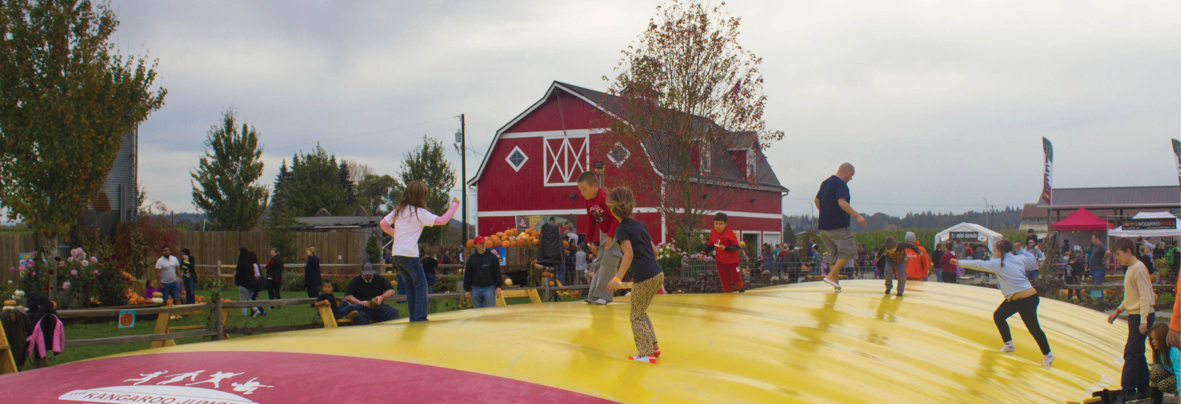Stocker Farms main banner image - Family Adventure Farm - Snohomish, WA