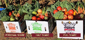 CSA share options at Stony Hill Farms in South Orange NJ