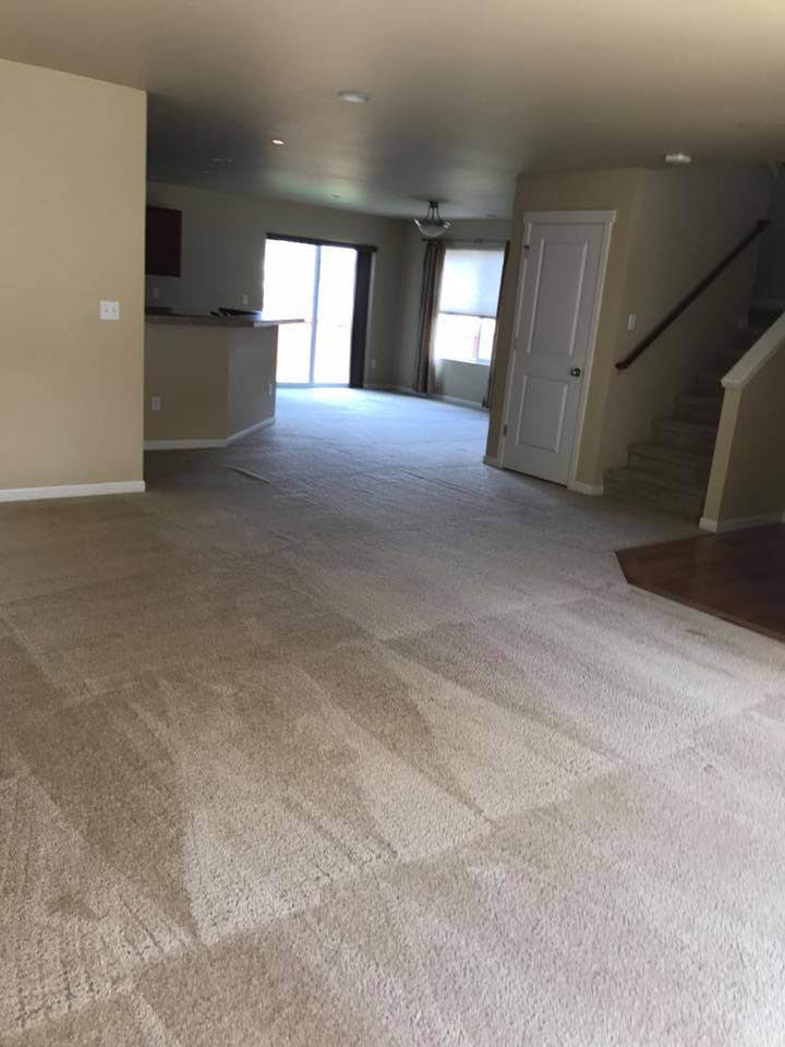 Carpet cleaning coupons near me - Amburgey Carpet Care - carpet cleaners near me - carpet cleaning near me