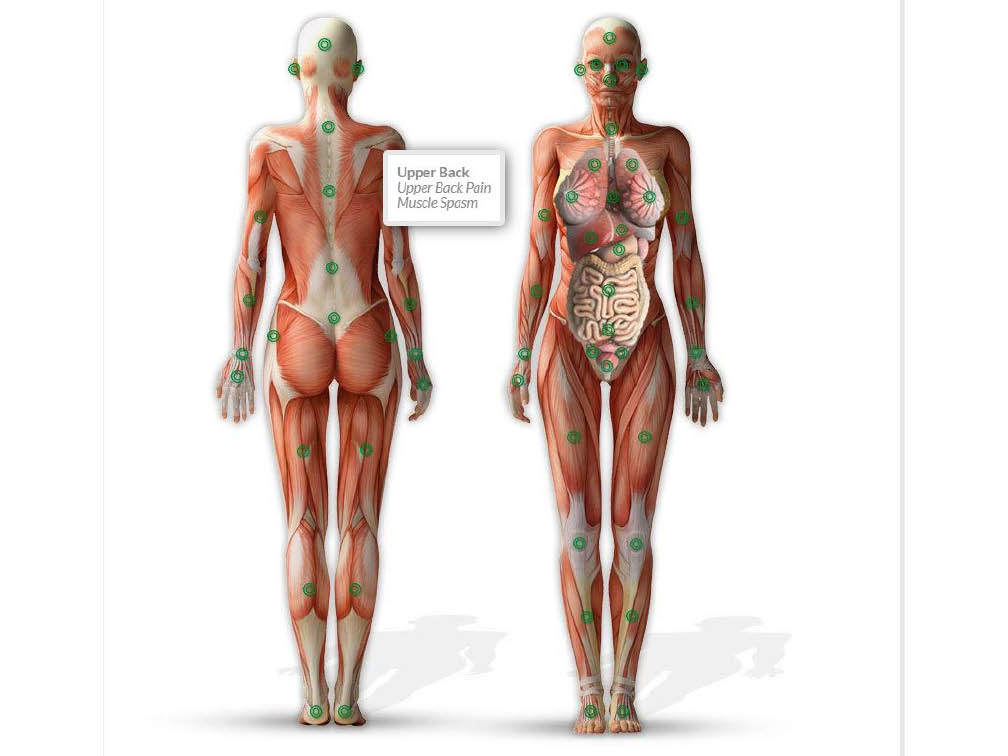 Chiropractic for Women at Sussex County Total Health in Newton, NJ