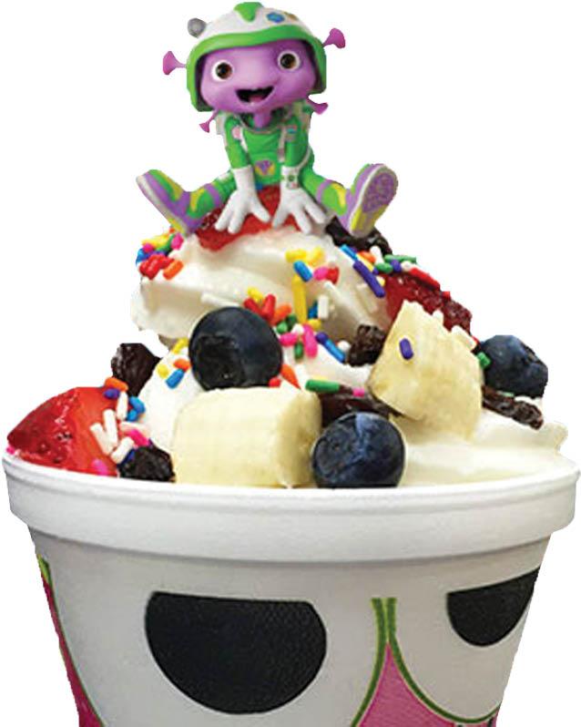 Frozen Yogurt topped with sprinkles & blueberries near Hershey, PA.