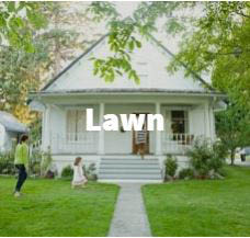 trugreen lawn care & weed control