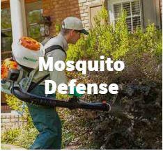mosquito control treatments