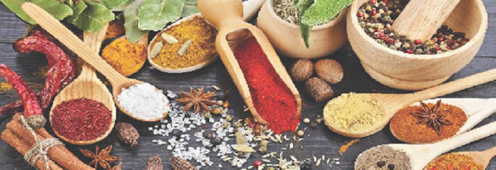 Cuisine From the Heart of India