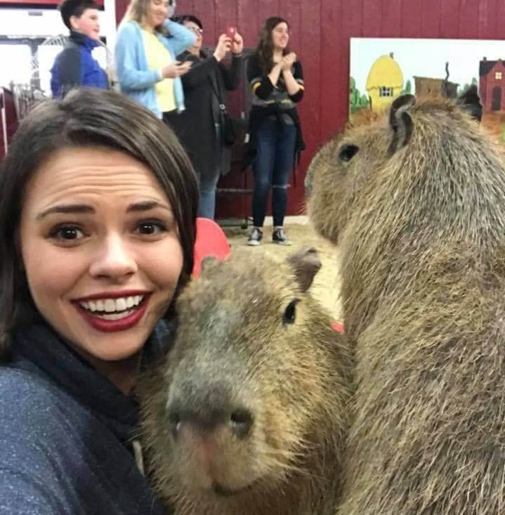 Have fun and play with the animals at Debbie Dolittle's Petting zoo - indoor petting zoo in Tacoma, Washington - petting zoos near me