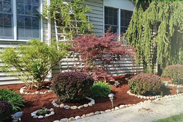 MG Landscape - professional landscapers - professional landscaping - Tacoma, WA - lawn maintenance - lawn care