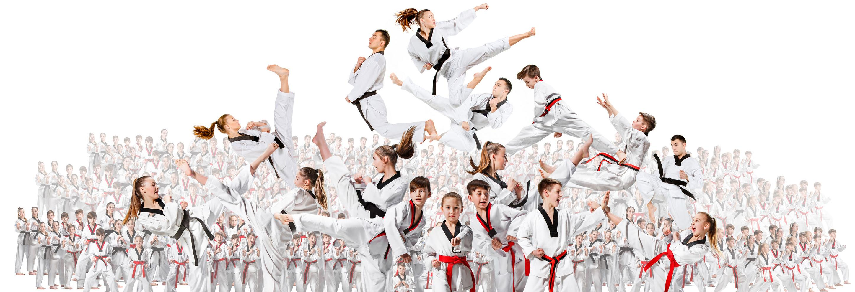 Traditional TaeKwon-Do Center South Tampa banner