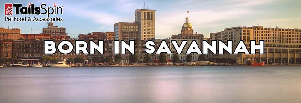 Born in Savannah; TailsSpin Pet Food & Accessories banner