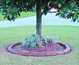 tallahassee landscaping company