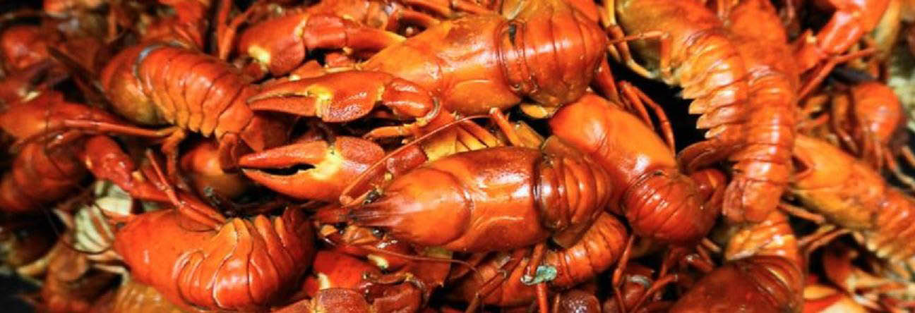 The Cajun Crawfish main banner image - Everett, WA