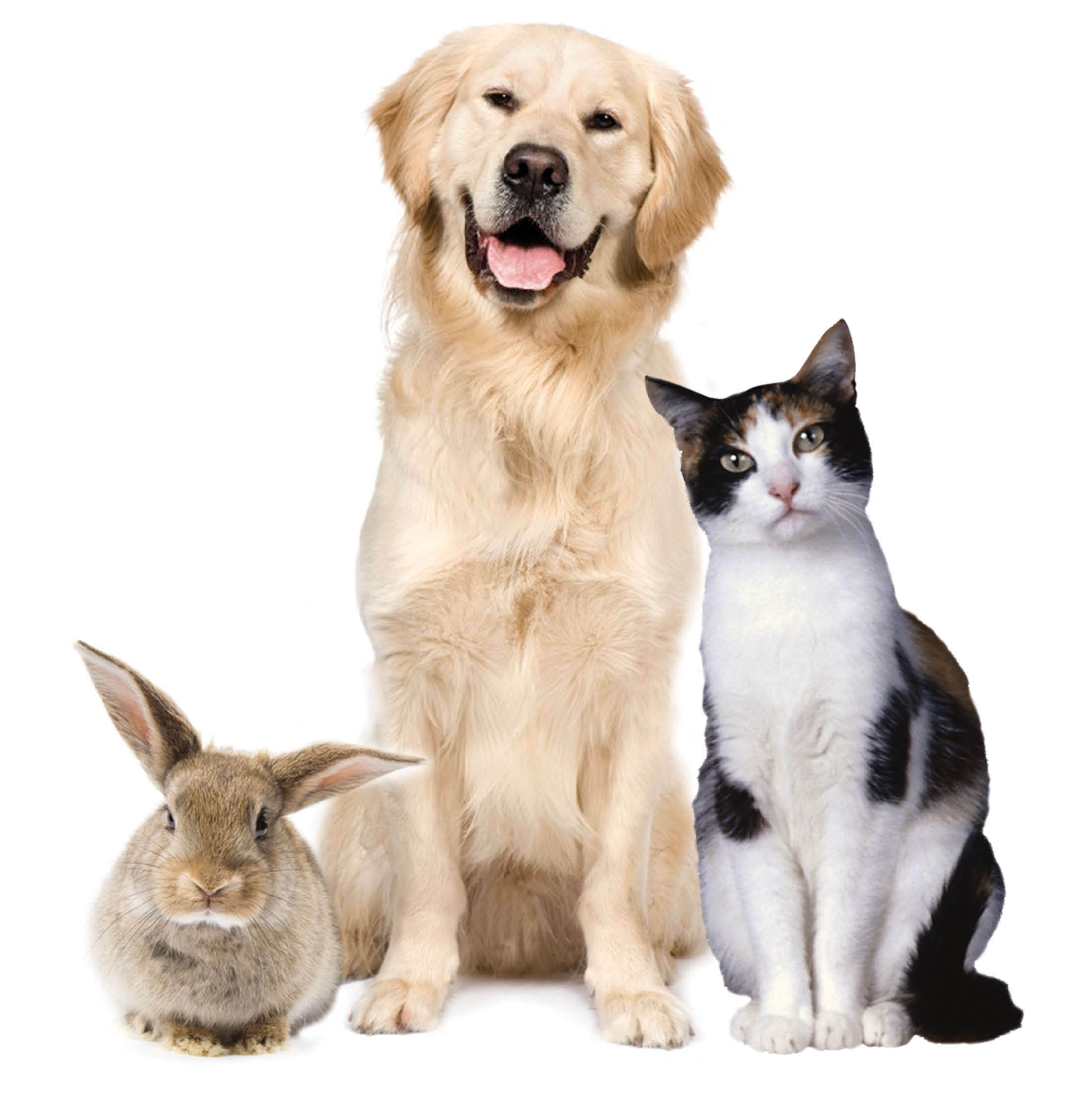 The Grange - Issaquah, WA - Healthy gifts for your pets - pet food - pet treats - pet supplies