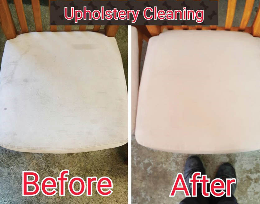 The King of Clean - upholstery cleaning - Enumclaw, Washington - carpet cleaners