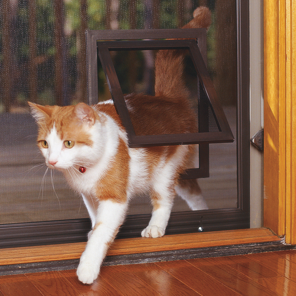 The Pet Door Store - pet doors for cats - doggy doors - doggy door companies