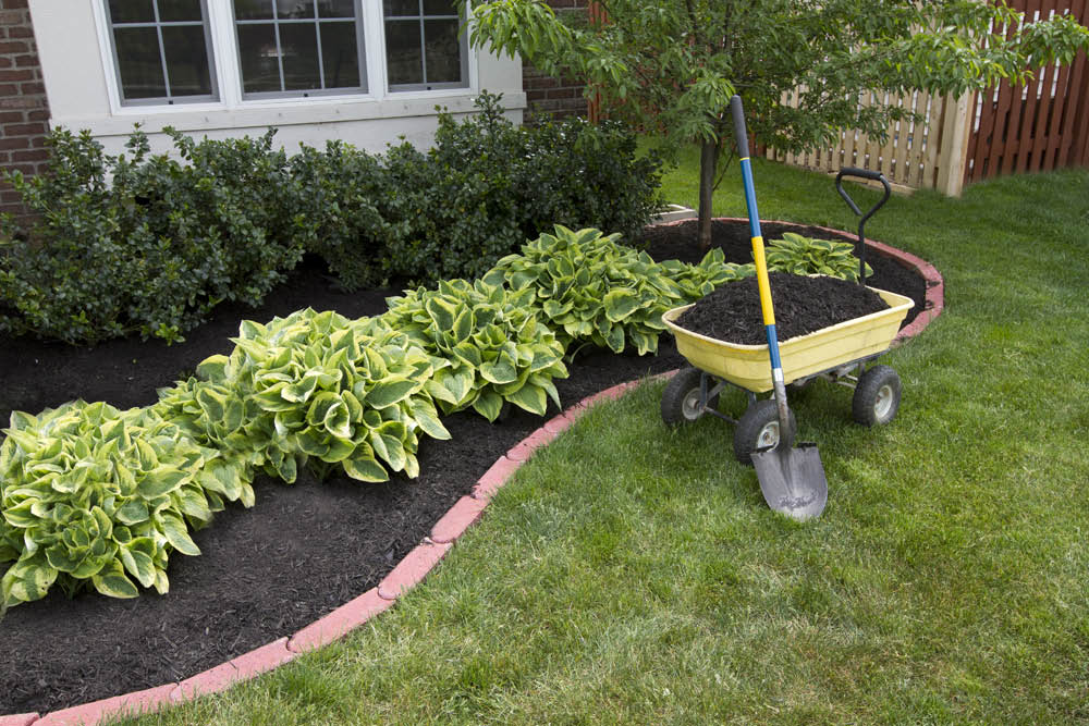Mowing, Landscaping, Yard Work, Pruning, Planting, Patios, Walkways, Ponds, Cleanup