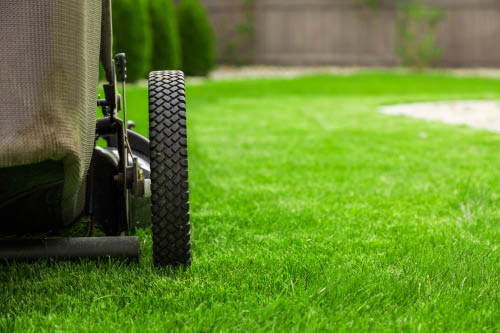 Mowing, Landscaping, Professional Mowing, Green Grass, Cut Grass, Fresh Cut Grass, House Work, Yard Work