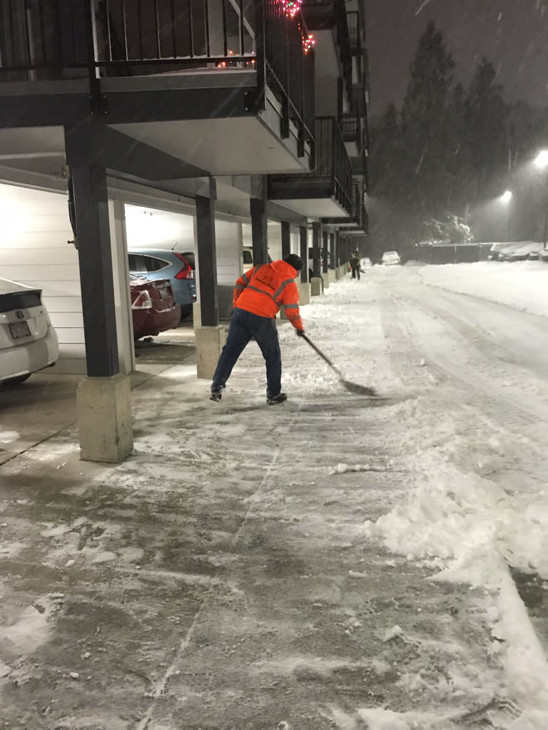 storm cleanup, snow removal
