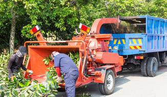 tree disposal, wood chipper