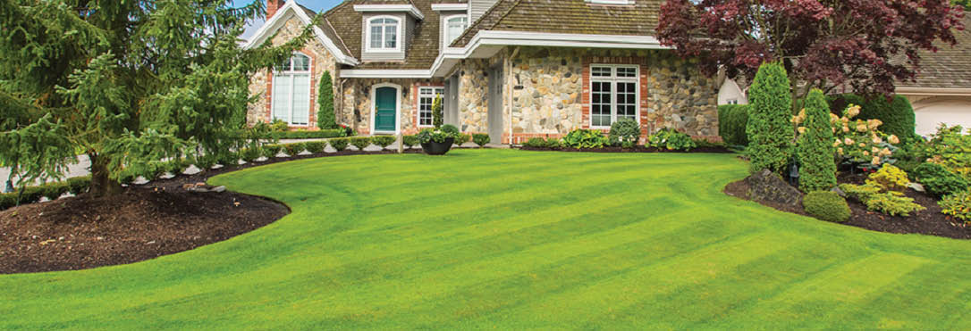 True Design Lawn & Landscape main banner image
