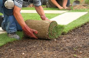True Design Lawn & Landscape - installation - aerating - thatching