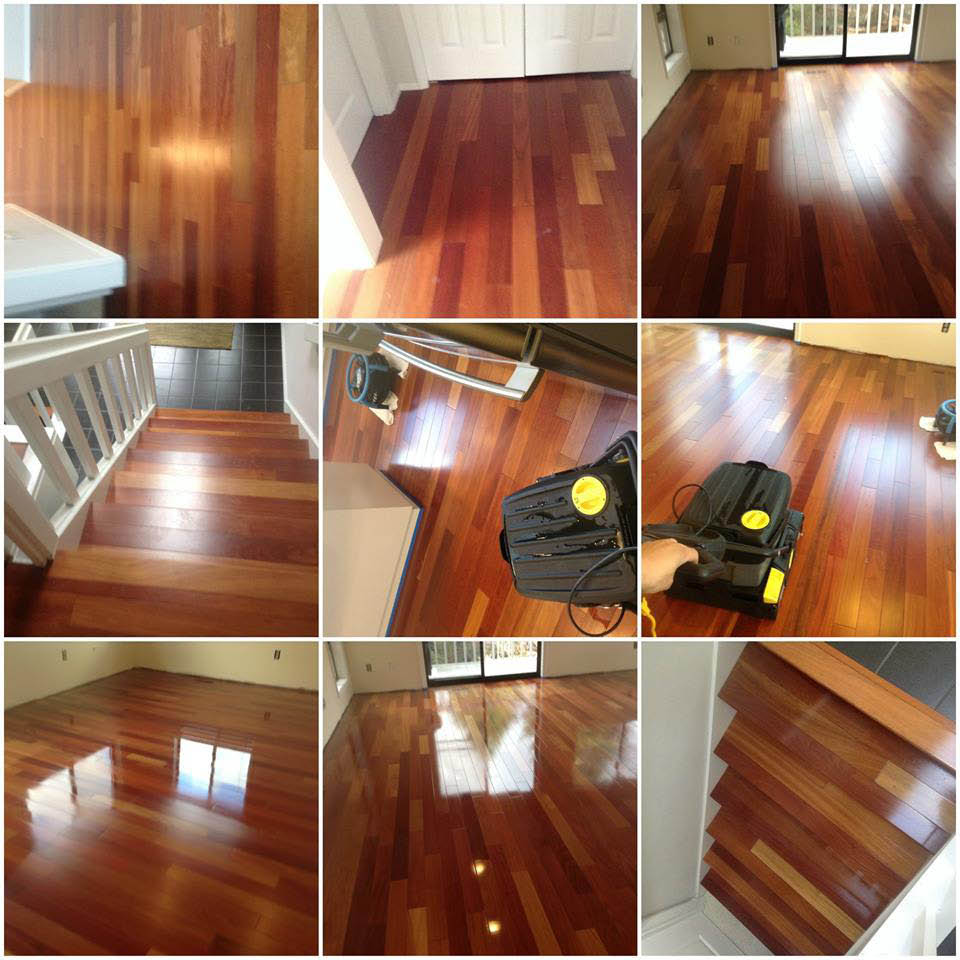 Tubro Carpet Cleaning - friendly employees - professional carpet cleaners - hardwood floor cleaning & preservation - Auburn, WA